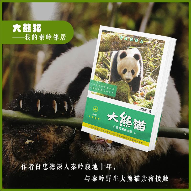 《大熊猫 我的秦岭邻居》