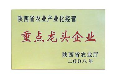 """2008年,陕西省农业产业化经营""""重点龙头企业""""(陕西省农业厅)"""